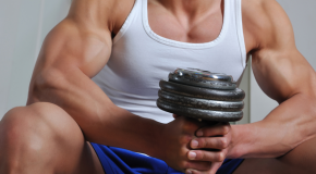 Shredding Fat and Building Muscles
