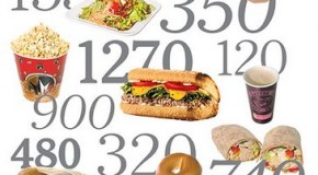 What do 2000 Calories Look Like?