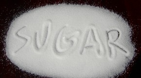 Sugar: The Bitter Truth (The SHORT Version)