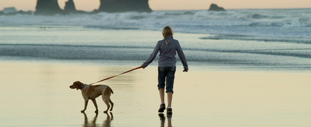 Could walking the dog do more for your health than you realised?